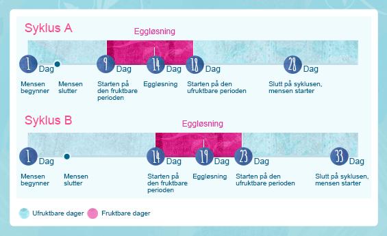 Bilde av to menstruasjonssykluser. Syklus A som varer i 28 dager og har en menstruasjonsblødning etter ca 9 dager. Syklus B har 33 dager og har en menstruasjonsblødning etter 14 dager,